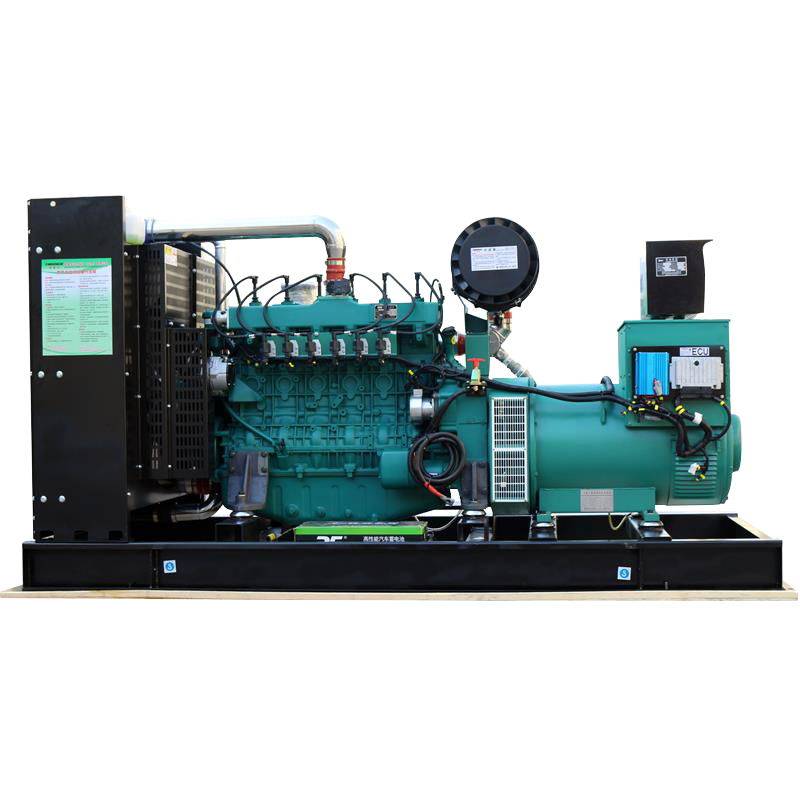 Industry Environmental Protection 24V Electric Start Generator Set Natural Gas