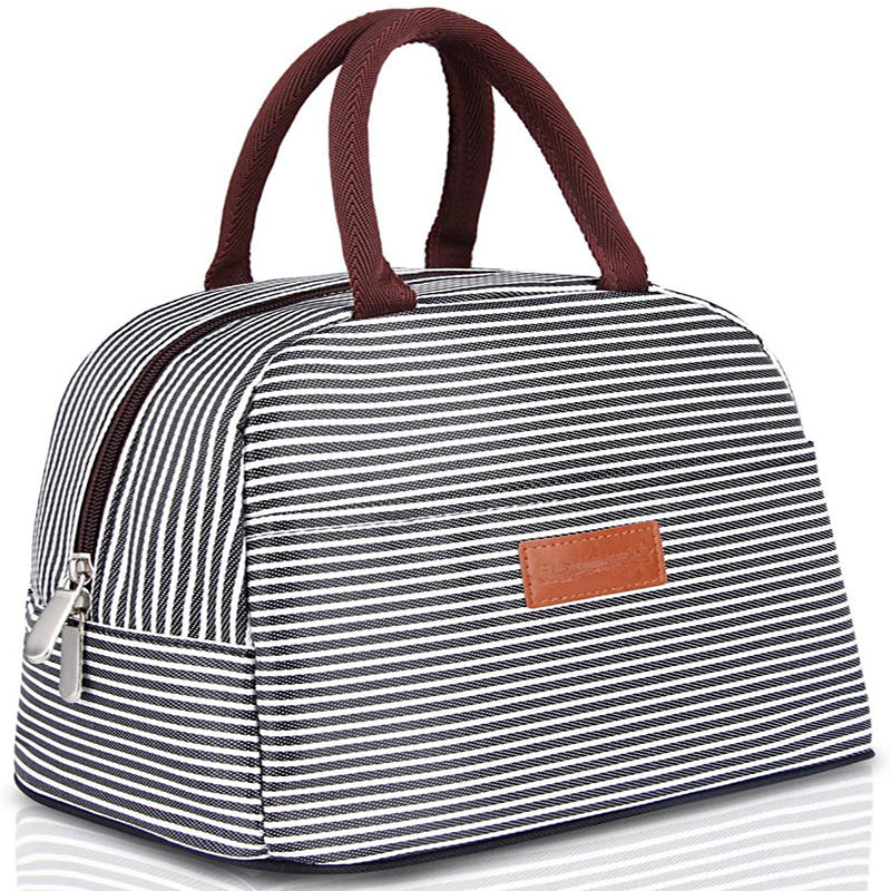 Lunch Bag Tote Bag for Women Lunch Box Insulated Lunch Container