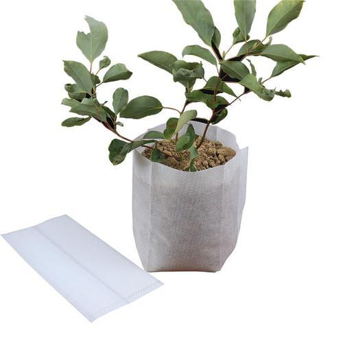 plant seedlings grow bag non woven fablic bags machine for crops seedling
