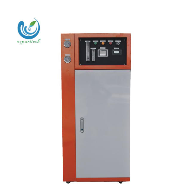 Small Capacity 70 Liters RO Deionizer Water Plant/Equipment/Machine