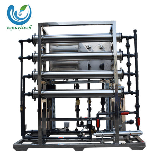 1000lph RO host Water Treatment Plant made in China manufacture