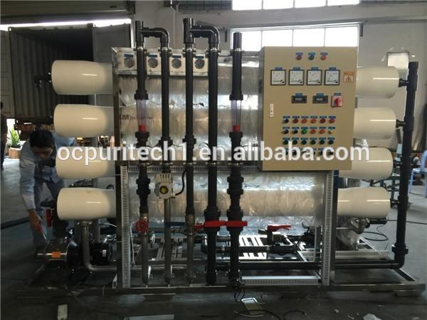 3000lph 2-pass Reverse Osmosis Membrane Water Purifier and EDI System
