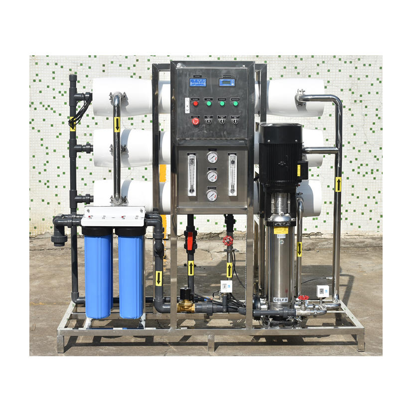 3000LPH Reverse osmosis auto ro plant for water treatment