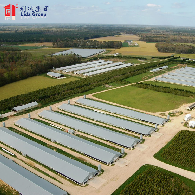 Steel structure poultry house for chicken poultry breeding house