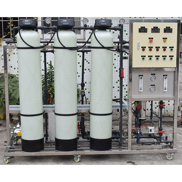250LPH reverse osmosis water filter mineral water plant project