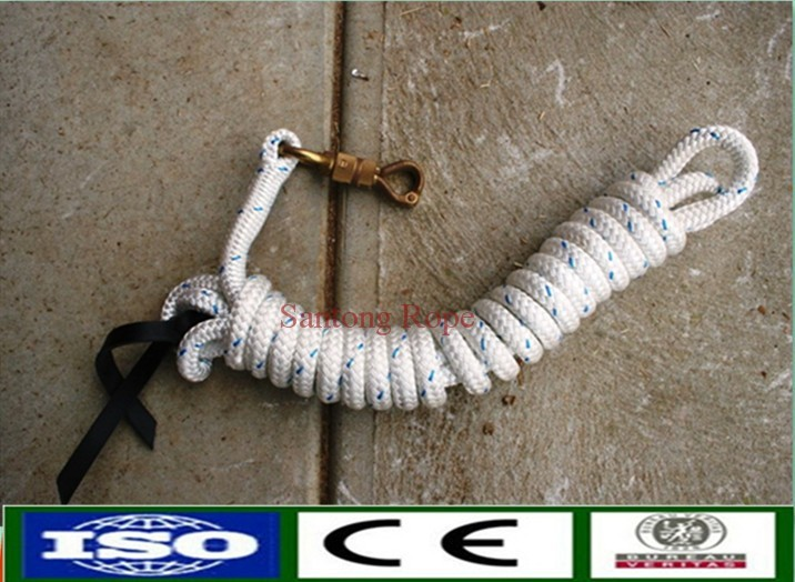 China Supplier pp Material horse halter and lead rope