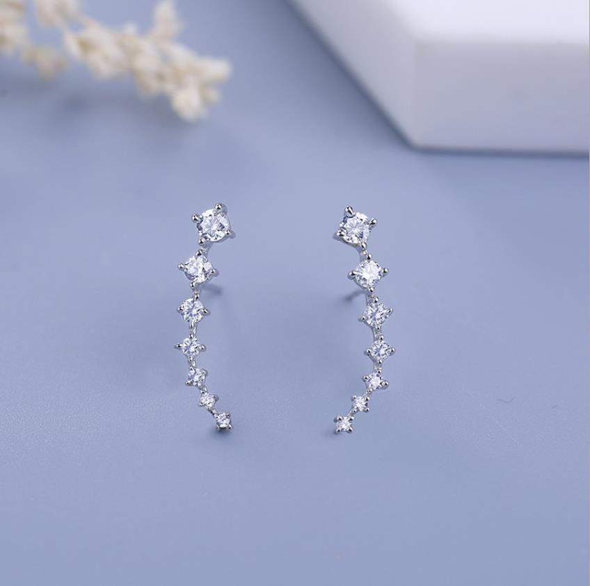 925 Sterling Silver Row Drill Set With Diamond Stud,Fashionable Silver Accessories Female Earrings