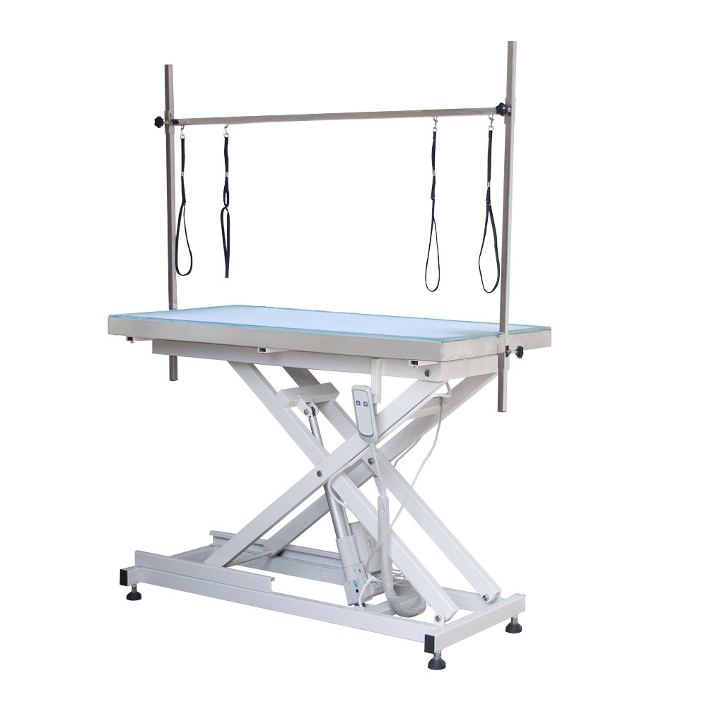 New Design LED Light Height Adjustable Electric Lifting Dog Grooming Table