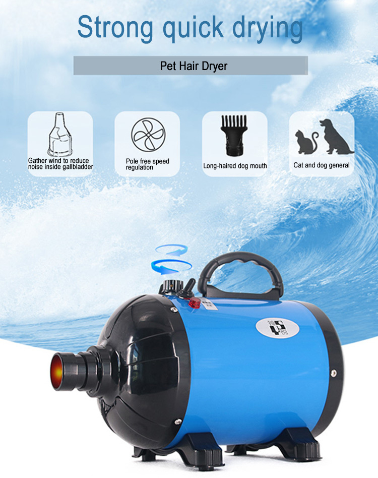 High quality 2800W high speed cat pet dog hair dryer 110V/220V dryer machine