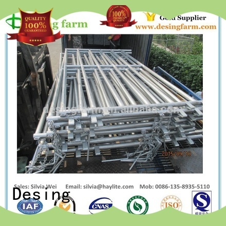 Desing horse stable stainless fast delivery