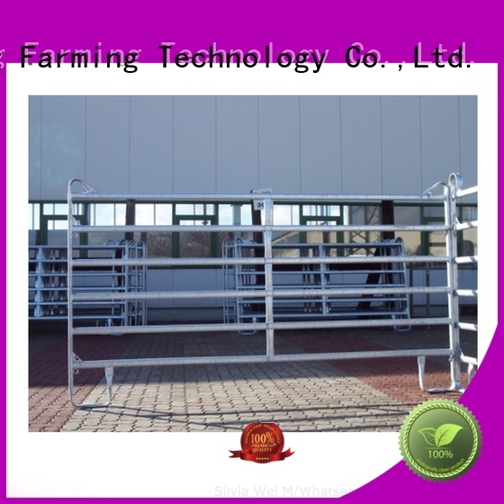 comfortable portable horse stables fast delivery