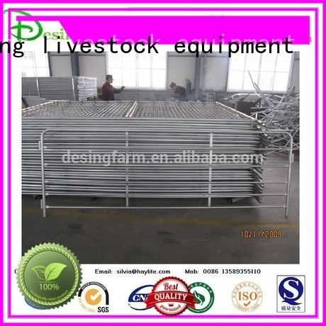 Desing sheep handling system factory direct supply for wholesale
