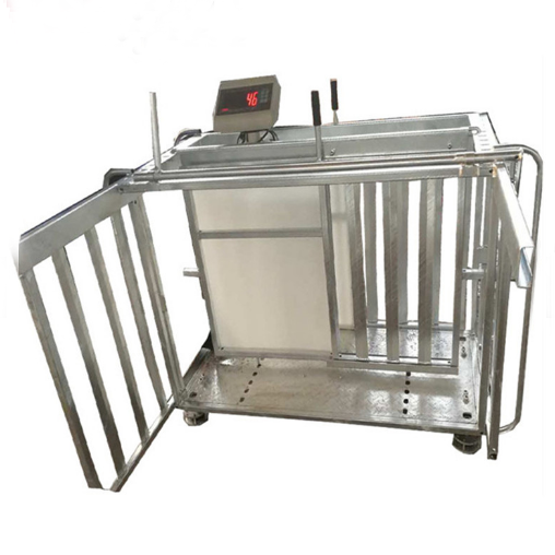 Electric Customized Galvanized Sheep Lamb Display Weighing Scale