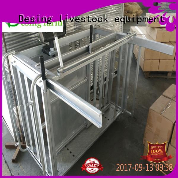 Desing best workmanship sheep handling system hot-sale high quality