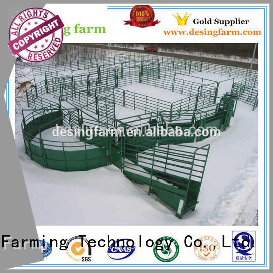 Desing sheep equipment factory direct supply favorable price