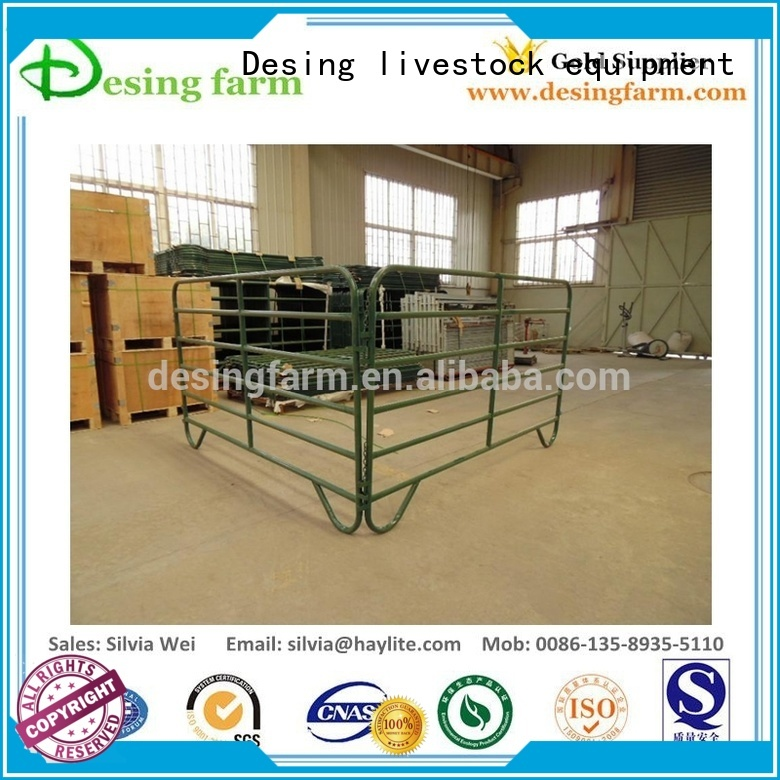 Desing custom horse stable easy-installation excellent quality