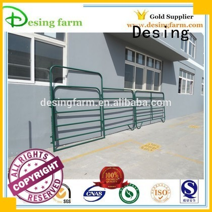 Desing best horse stables easy-installation quality assurance