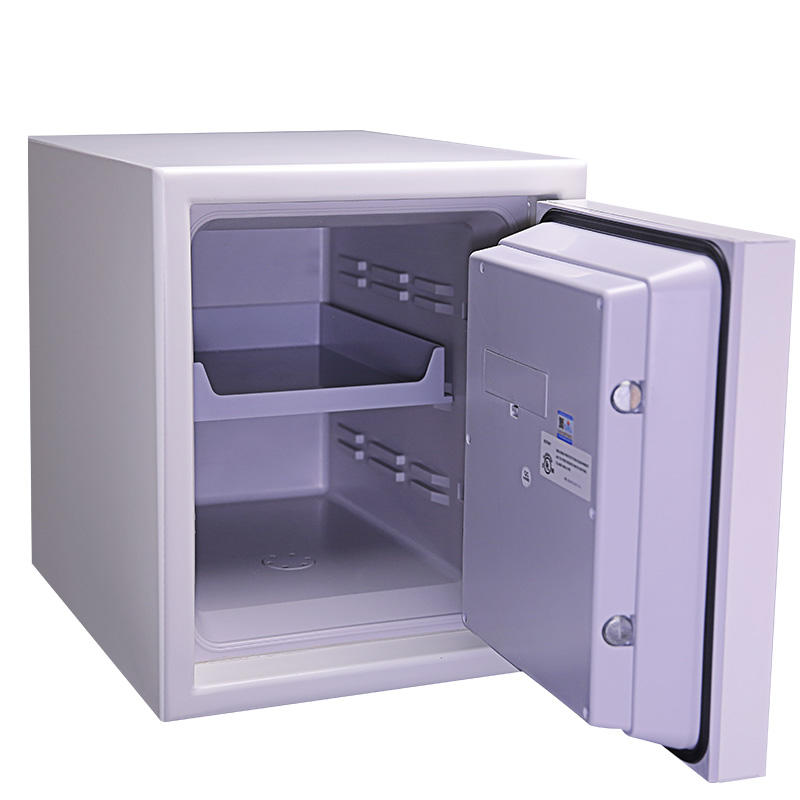 Office Coffre Fort for Fire Security(3091wsd)