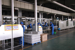 valve regulated 12 volt batteries supplier of solar battery