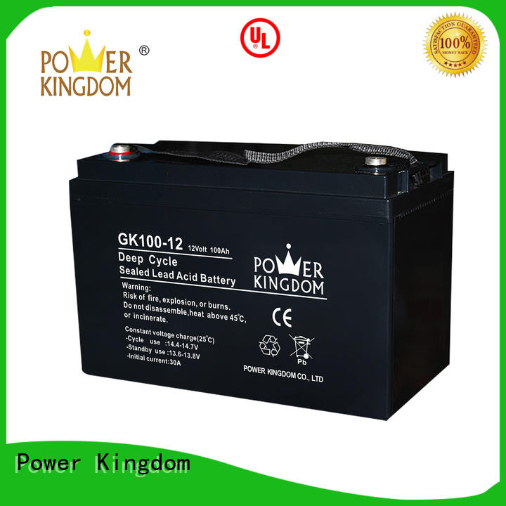 Power Kingdom rechargeable sealed lead acid battery with good price medical equipment