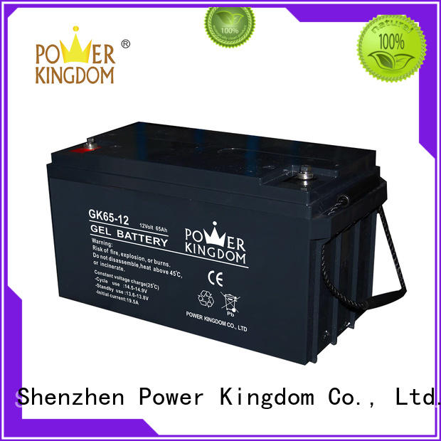 Power Kingdom ups battery pack with good price solor system