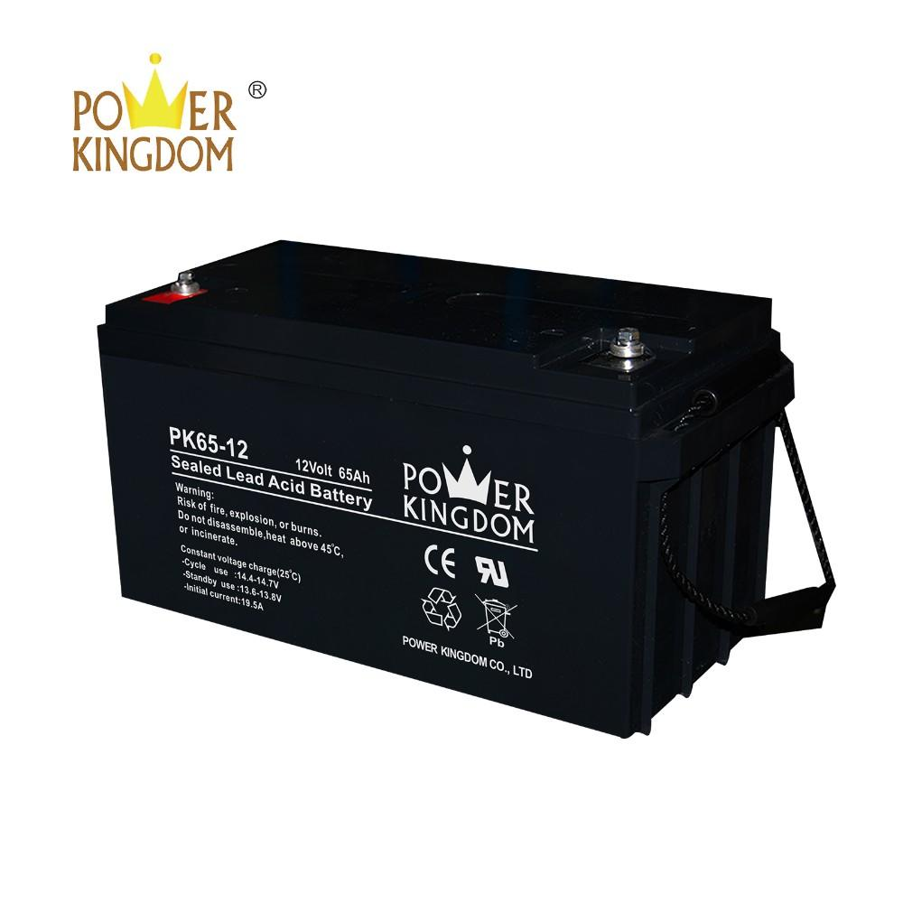 ISO certified high quality pure lead long life deep cycle 12V 65Ah Maintenance Free sealed lead acid battery