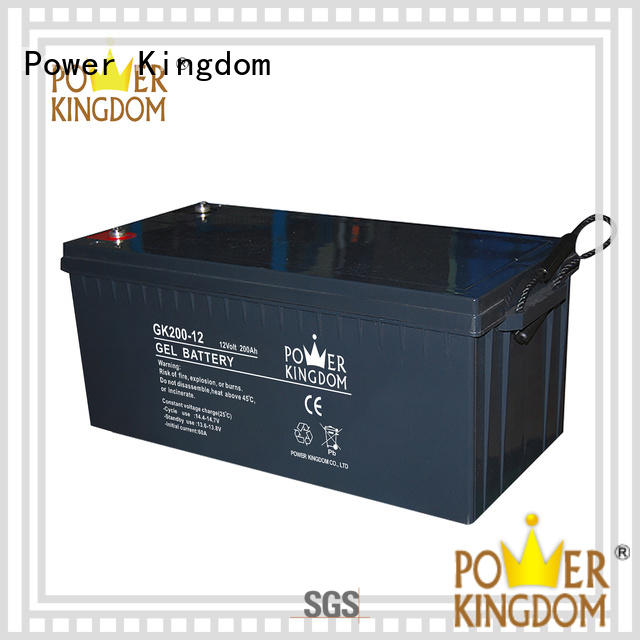 Power Kingdom high consistency rechargeable sealed lead acid battery design medical equipment