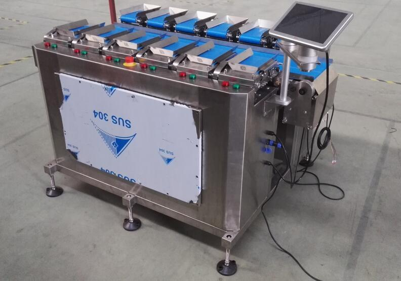 CE 12 Head Linear Combination Weigher/Multihead Weigher for Cucurbita pepo L/vegertable/fruit