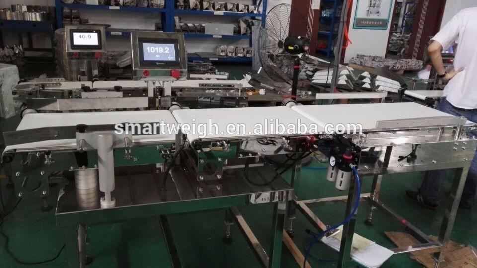 Conveyor Belt Weighing System For Food Production Line