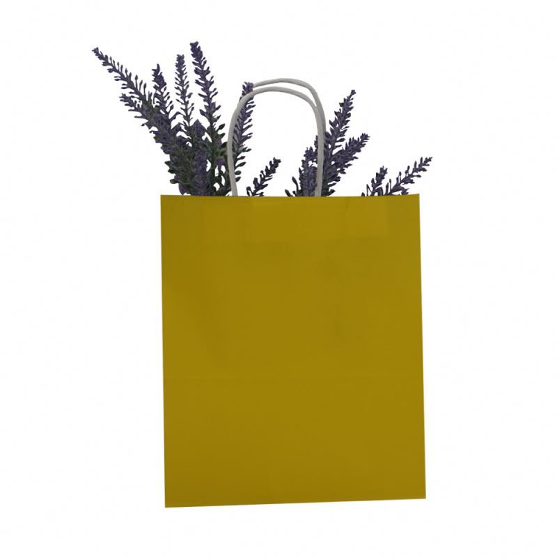 Excellent quality china kraft paper bag promotional color kraft paper bag