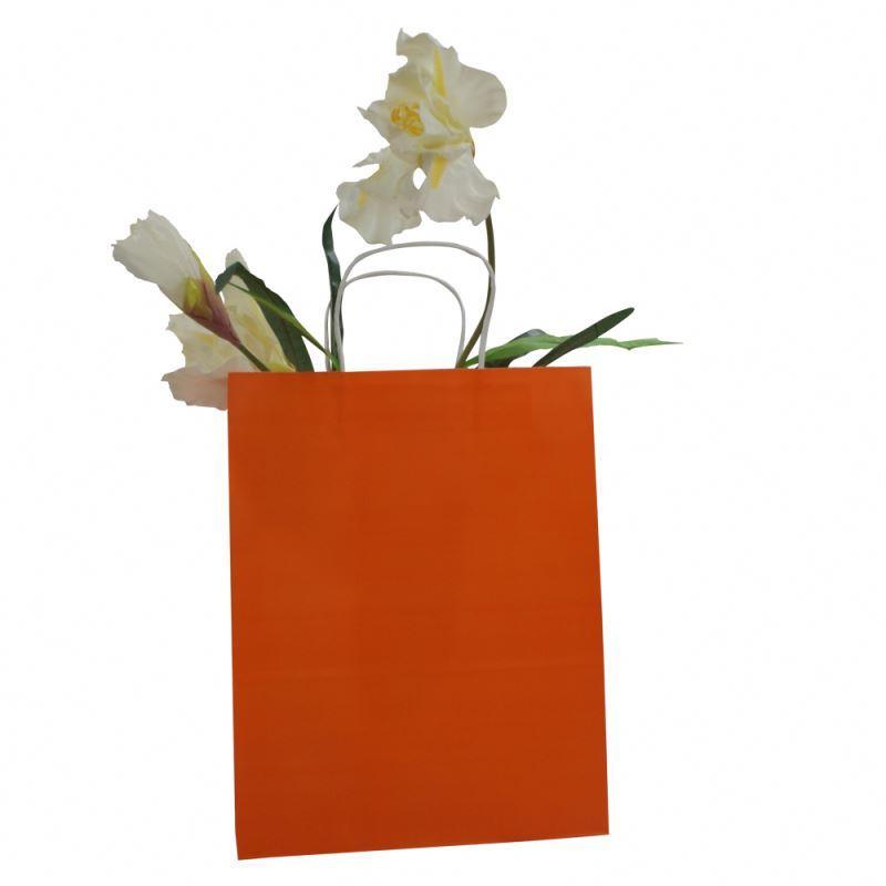 Top selling kraft gift paper bag workmanship kraft paper bag with logo