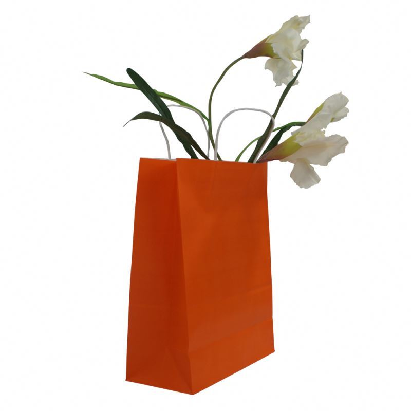 Newest selling natural kraft paper bag wonderful kraft paper gift bag