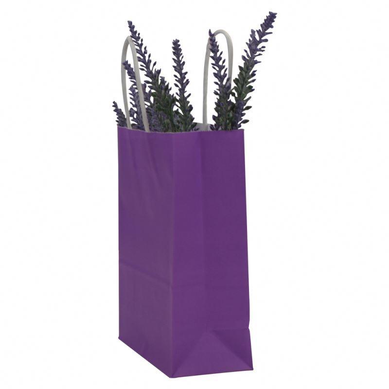 New selling paper kraft bag with handle promotional kraft paper packaging bag