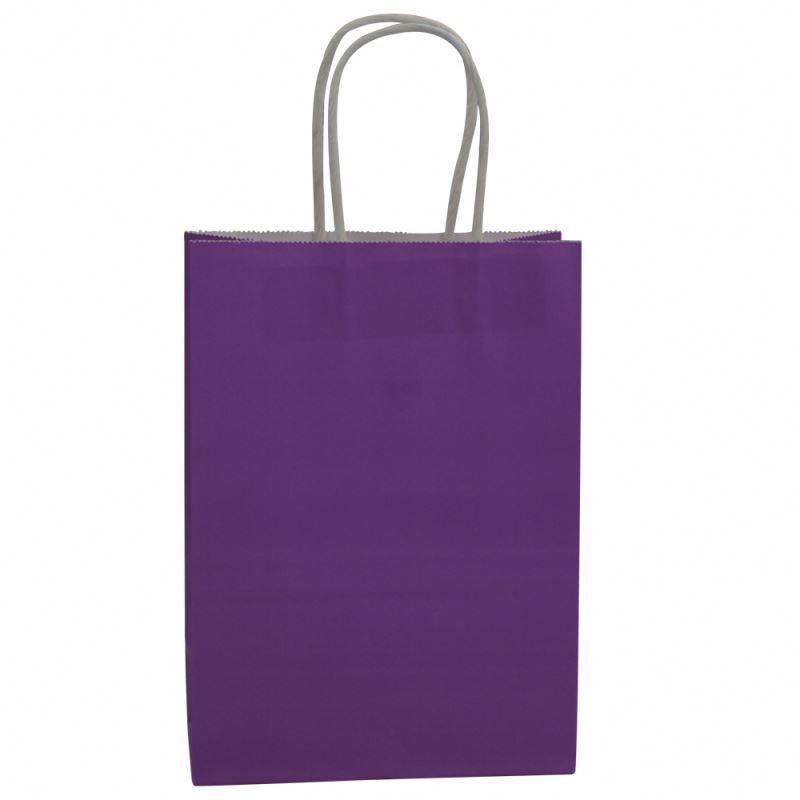 Custom Recyclable Printed High Quality Packaging Kraft Paper Bag With Twisted Handles