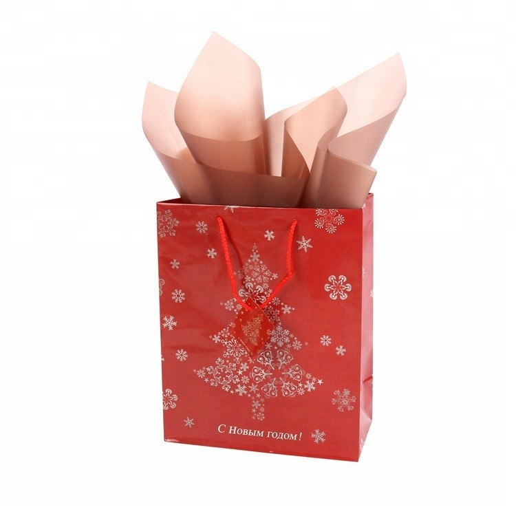Custom Sizes Personalized Small Gift Shopping Paper Christmas Bag