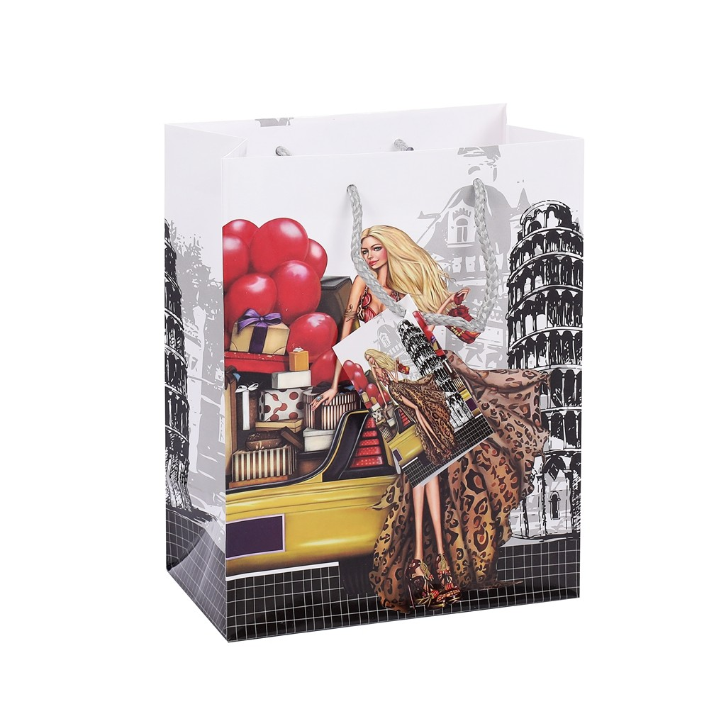 Fashionable Print Storage Gift Shopping Paper Bag With PP Rope Handles