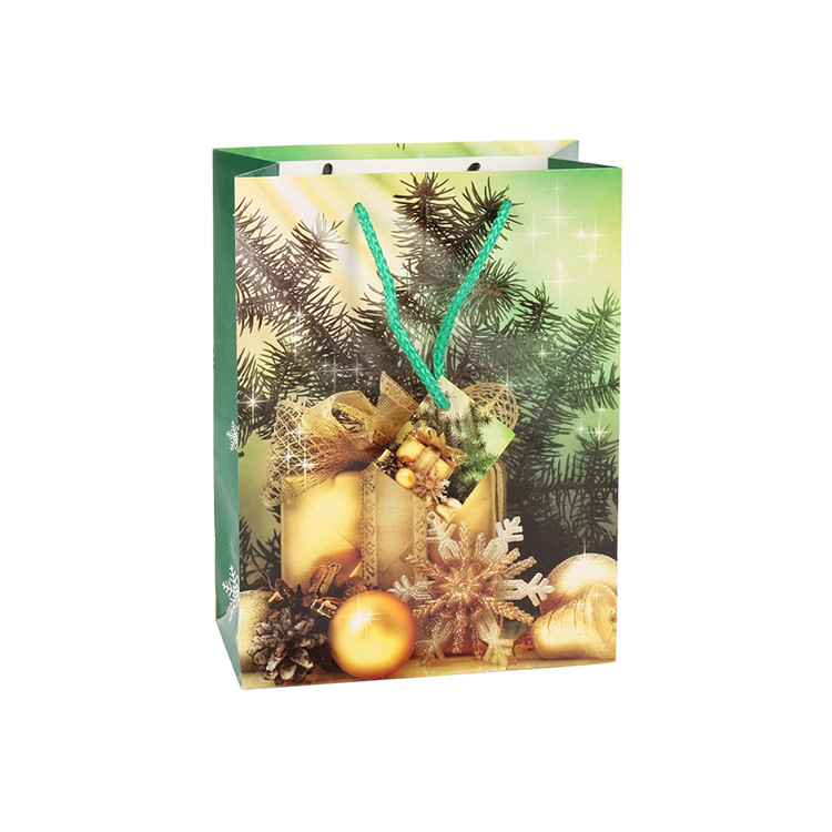 High Quality Eco-friendly Fashion Fancy Christmas Handcraft Paper Bags With Rope Handles
