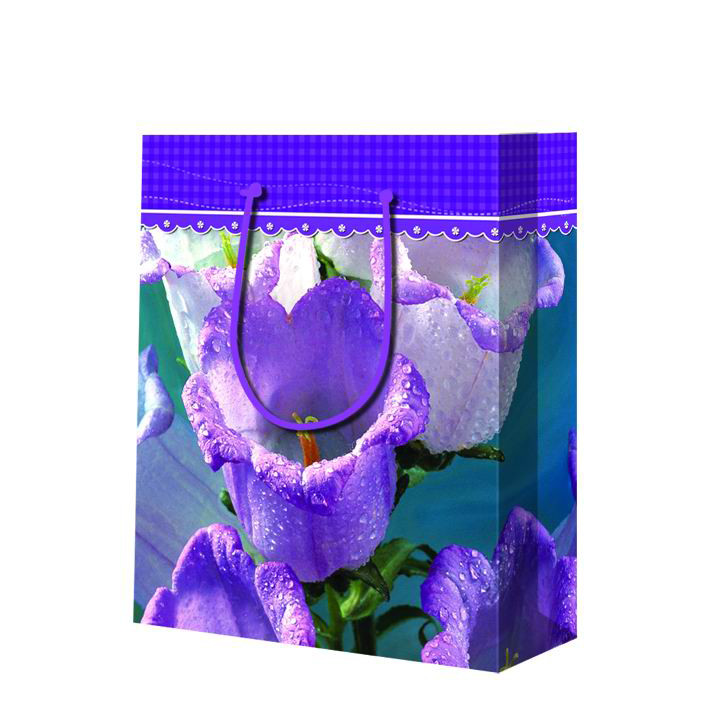 2019 New Design Recyclable Customized Purple Wine Bottle Packaging Paper Gift Bag With Handles