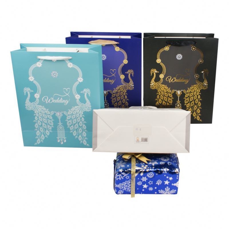 New arrived colour paper gift bag fashionable shopping gold stamping craft paper bag