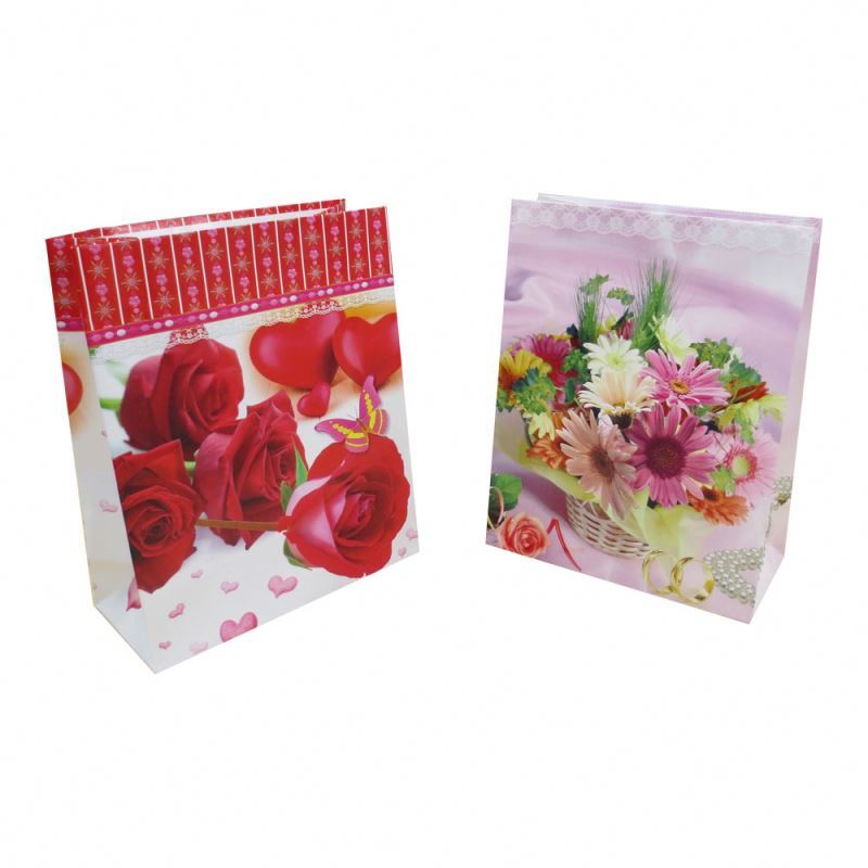 Factory supply light and dumb film coated paper bag multicolor paper shopping bags