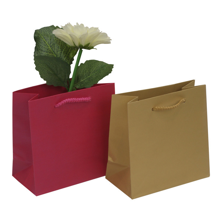 Custom recycle craft shopping packing kraft paper bag with rope handle