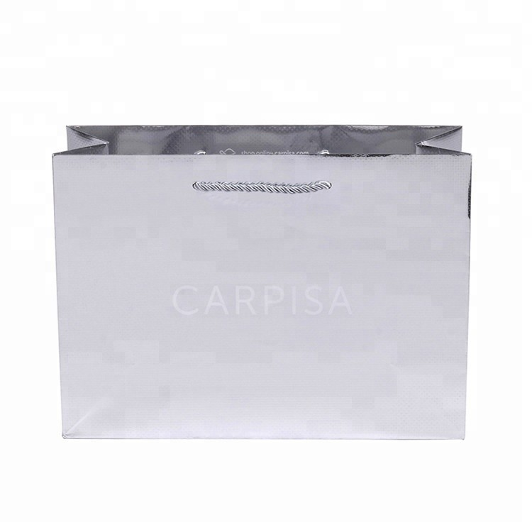 2019 New Simple Design Recyclable Luxury Double Handle Paper Carry Bags