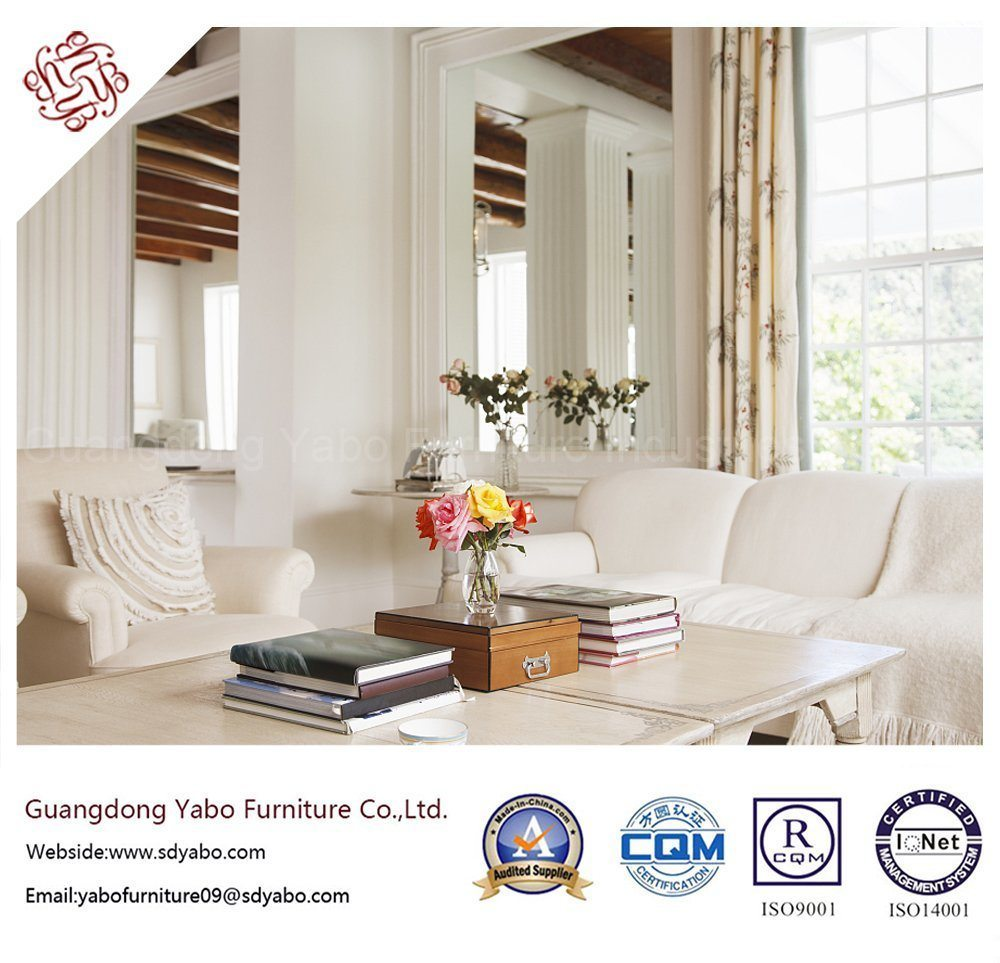Delicate Hotel Furniture for Living Room with Furniture Set (YB-B-22)
