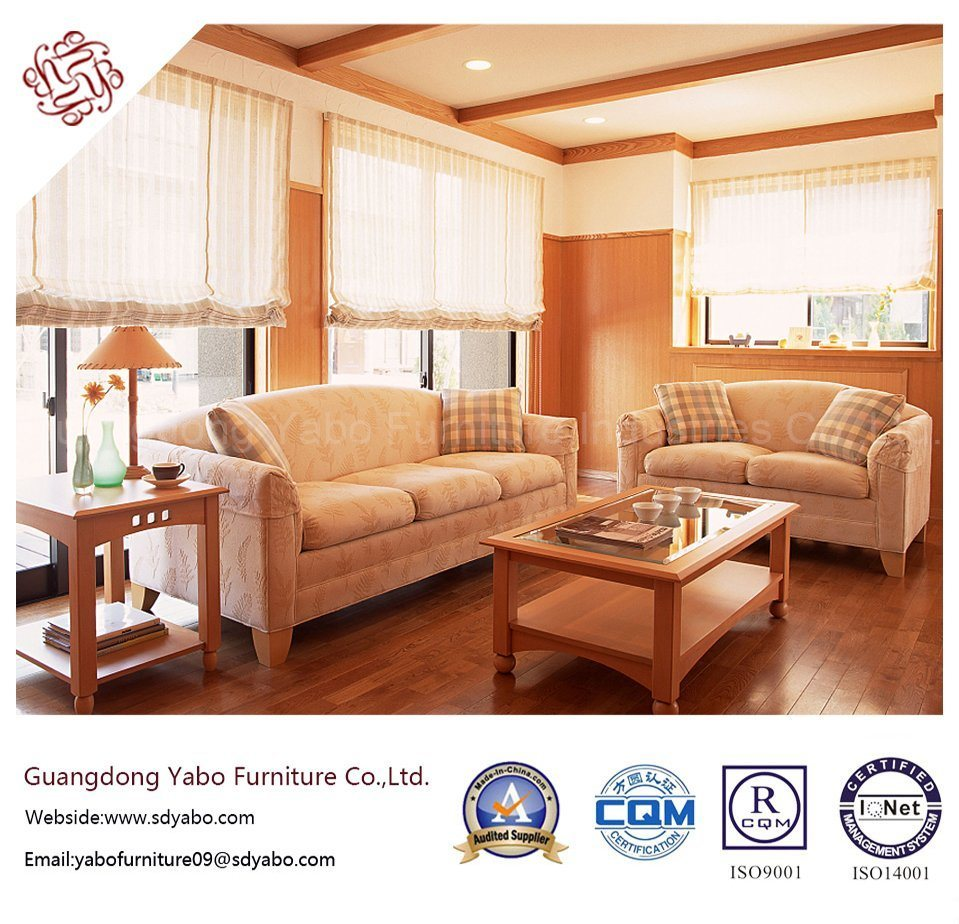 Popular Hotel Furniture with Living Room Sofa Set (YB-S-1006)