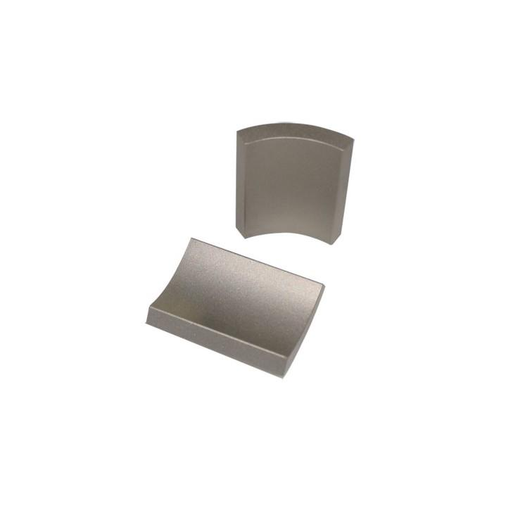 Couple magnetized Arc Neodymium Magnet for motor