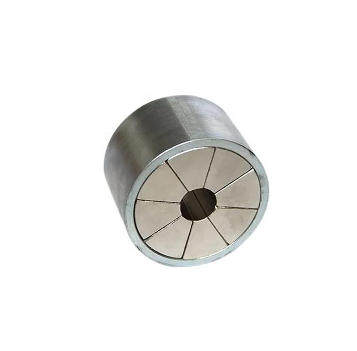 Factory Direct Sell Customized Halbach Array Strong Magnetic Coupling, Brushless AC Motor Magnetic Assembly